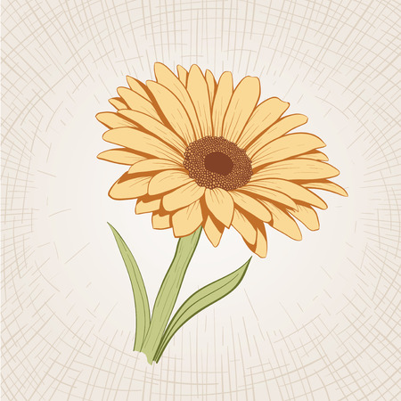 etched: Vector hand drawn yellow flower. Global color CMYK.