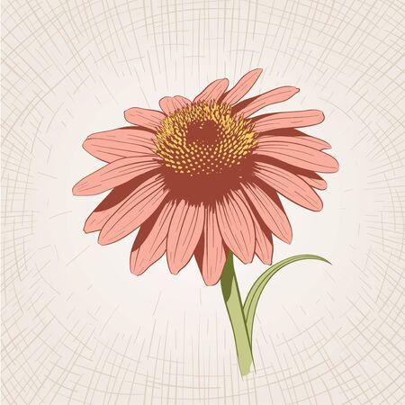 sketchy illustration: Vector hand drawn flower. Global color CMYK.