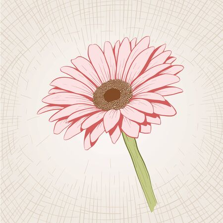 etched: Vector hand drawn pink flower. Global color CMYK.