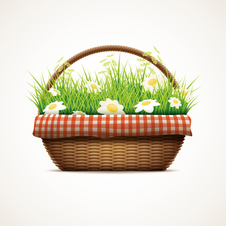 wicker: Vector illustration of realistic wicker basket. Grass and daisy flowers in wicker basket. Elements are layered separately in vector file. Illustration