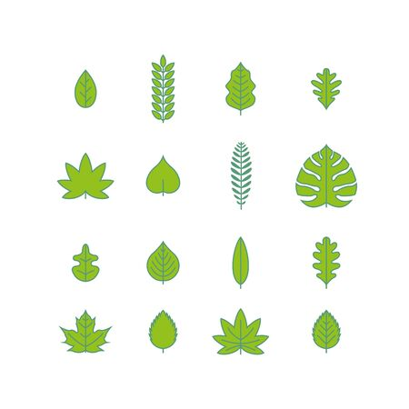 elm: various leaf icon collection.