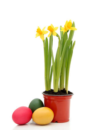 Daffodils and Easter Eggs photo