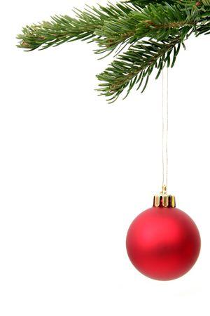 christmas tree branch: Christmas ornament