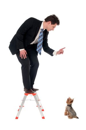 Businessman on top of a ladder pointing at dog