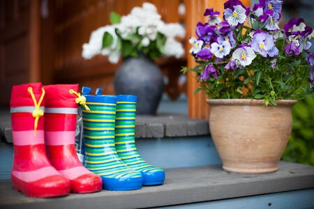 welly: Rubber boots and flowers Stock Photo