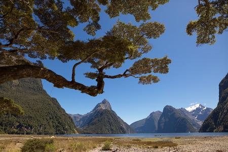 water alphabet: Milford Sound, South Island, New Zealand Stock Photo