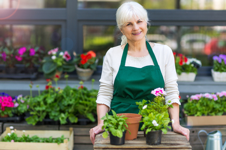 Happy owner of a flower shop Stock Photo