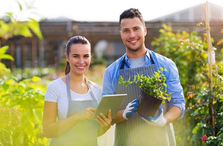 Empregados sorridentes no centro de jardinagem