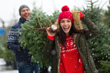 Couple buying Christmas tree Stock Photo