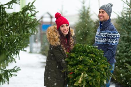 Couple buying Christmas tree Stock Photo
