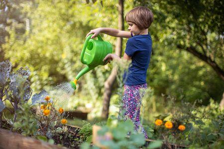 Nettes kleines Mädchen genießt die Gartenarbeit im städtischen Gemeinschaftsgarten