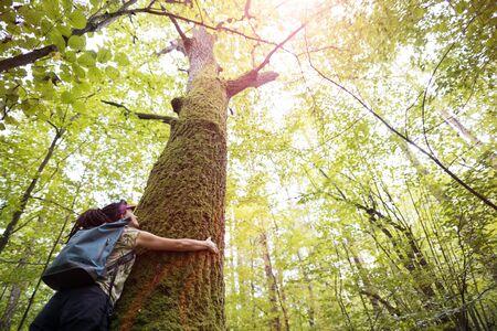 Woman hugging tree in forest