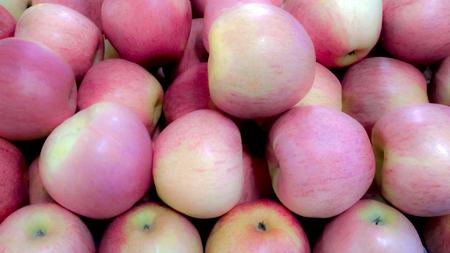 Group apples by the light soft. Фото со стока