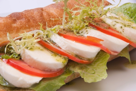 sandwich with tomato and mozarella on white dish photo