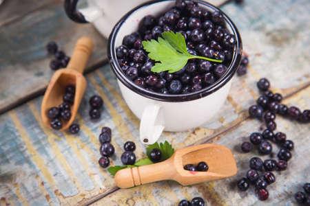 bilberry: fresh bilberry with green parsley in crockery dish
