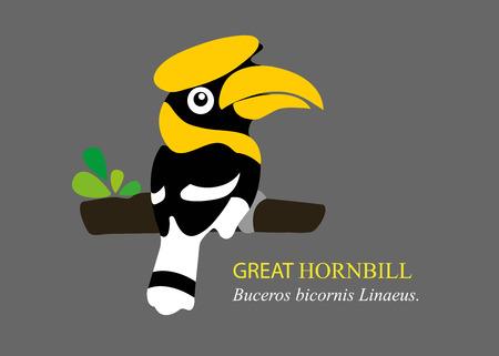 hornbill: A vector cartoon great hornbill. Illustration