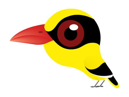 A birds cartoon of Black-naped Oriole or oriole bird type and cute bird because it's have a big eyes.