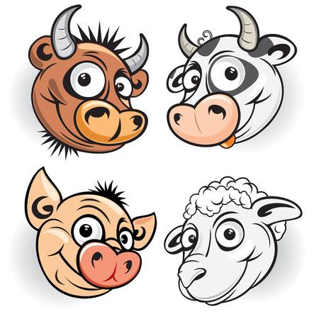 vaca caricatura: Mascota de los animales de granja del Toro, vacas, cerdos, ovejas
