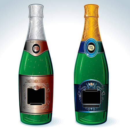 Two luxury champagne bottles with empty label for your design (no meshes used) Vector