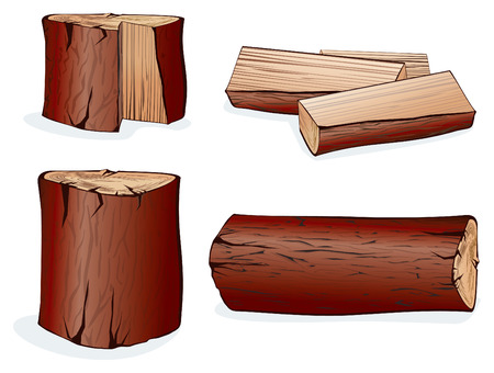 maderas: Elementos vectoriales de madera de set.Isolated