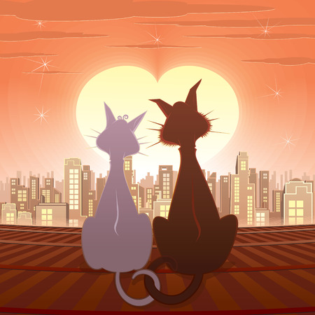 Couple of cats  illustration  Vector