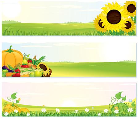 cuerno de la abundancia: Banners de la naturaleza de la acci�n de gracias de belleza establecer - ilustraci�n con paisaje rural, el girasol y la cosecha madura