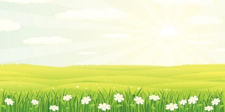 Ilustración de verano de belleza o paisaje de primavera Ilustración de vector