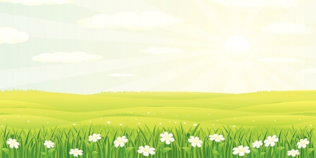 campi�a: Ilustraci�n de verano de belleza o paisaje de primavera Vectores