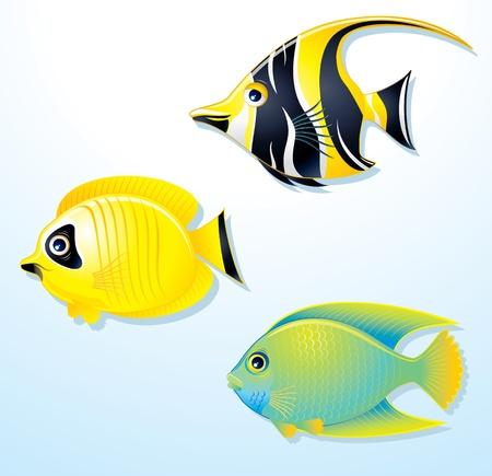 idool: Set van exotische tropische vissen - vectorillustratie Stock Illustratie