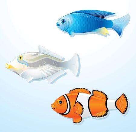 Conjunto de peces tropicales exóticas - ilustración vectorial