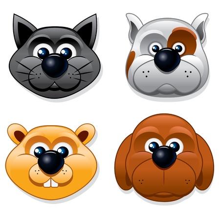 Set of Cartoon Pet, Vector Illustration Vector