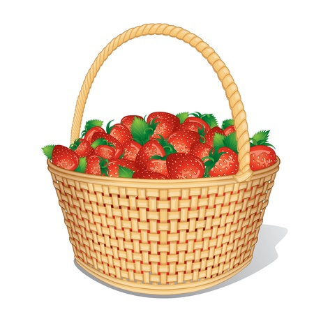 bast: Ripe Strawberries in Basket  Cartoon Vector Isolated on White Illustration