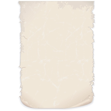 parchment scroll: Aged Paper Poster  Vector Image Illustration