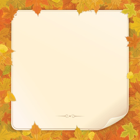 Autumn Background  Vintage Paper Scroll and Dry Autumn Leaves from the Trees Stock Vector - 16446689