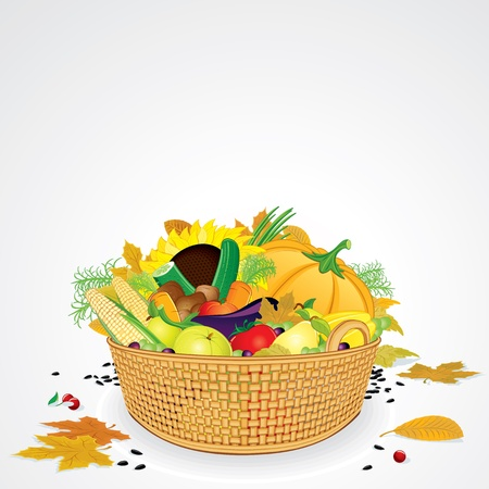 Thanksgiving Basket with Vegetables, Fruits and Leaves  Isolated on White Background Vector