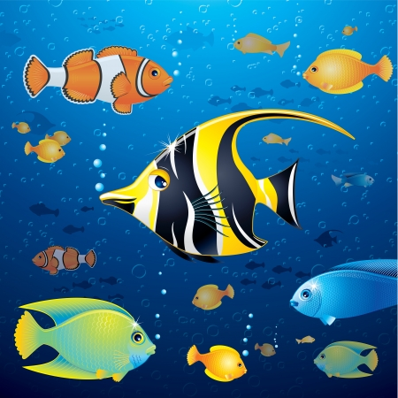 neon fish: Underwater Background with Colorful Tropical Fish Stock Photo
