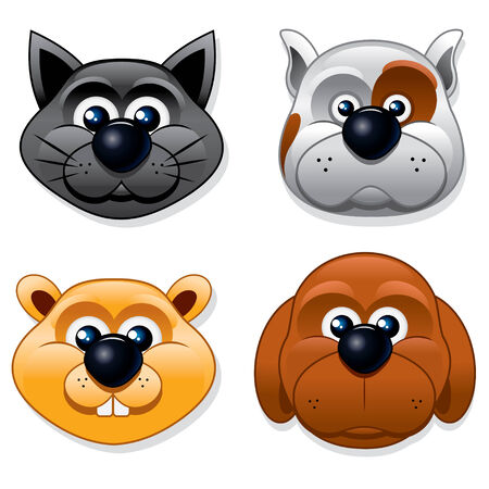 gato caricatura: Conjunto de animales de dibujos animados, ilustración vectorial