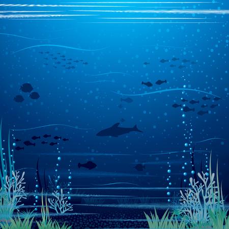corales marinos: Paisaje subacuático hermoso. Arte Vectorial listo para su texto y Diseño.