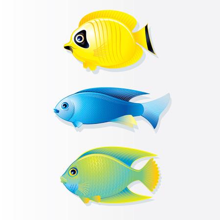 Cartoon vector tropische vissen. Butterfly Fish, Neon Fish and Queen Angel.