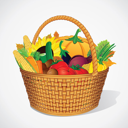 vegetable basket: Autumn Fresh Vegetable and Fruits in Basket. Ready for Your Text and Design.