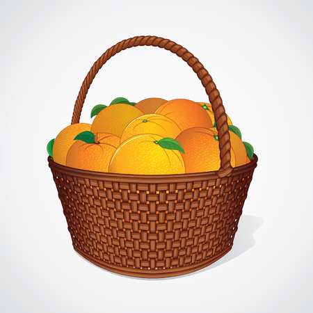 nourishment: Fresh Oranges with Leaves in Wicker Basket. Vector Image Illustration