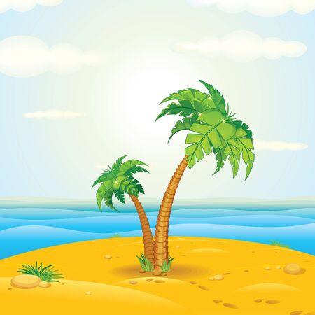 maldives island: Tropical Palm
