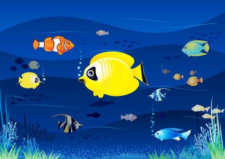 Aquarium Background Cartoon Vector Image