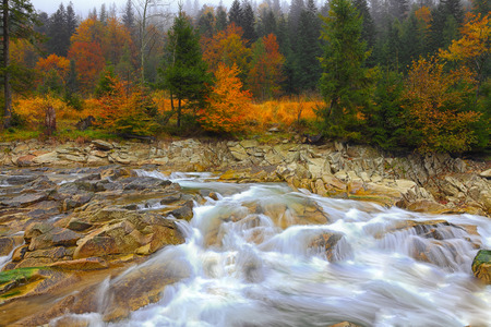 range of motion: rapid mountain river in autumn. Colorfull wood background