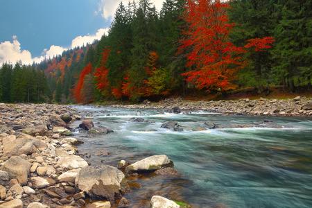 가 시간에 산 강. 바위 해안. Colourfull 숲