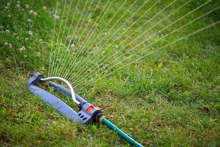 water sprinkler: water sprinkler for the garden. watering grass