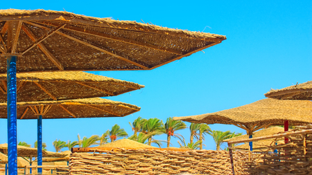 sunshades: sunshades on the beach. palm trees in the background Stock Photo