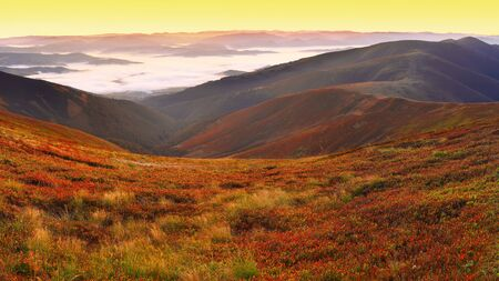 fall of the leaves: beautiful sunrise on the mountain top and cowberry foreground Stock Photo