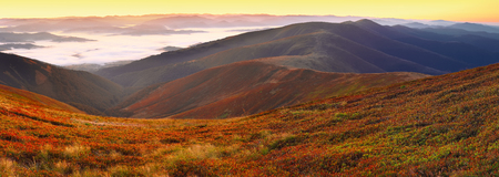 smokies: beautiful sunrise on the mountain top and cowberry foreground Stock Photo