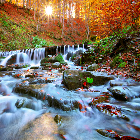 water flow: Beautiful waterfall in forest at sunset. Autumn landscape, fallen leaves, water flow.
